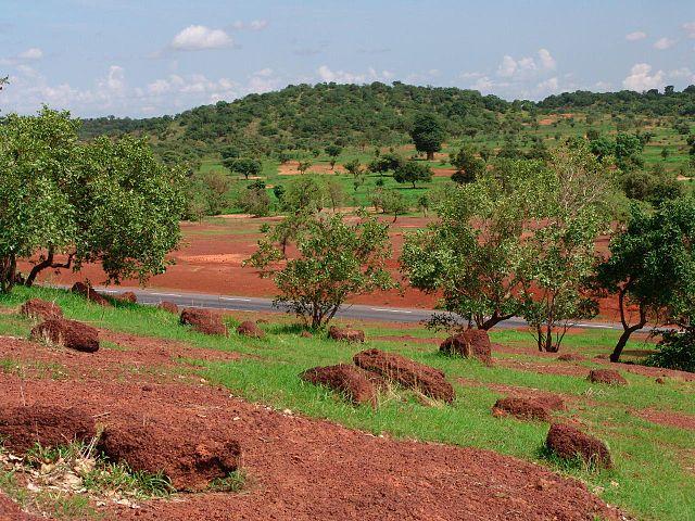 La gran muralla verde: mucho más que un proyecto de reforestación