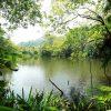 La restauración de ecosistemas fluviales es cosa de todos