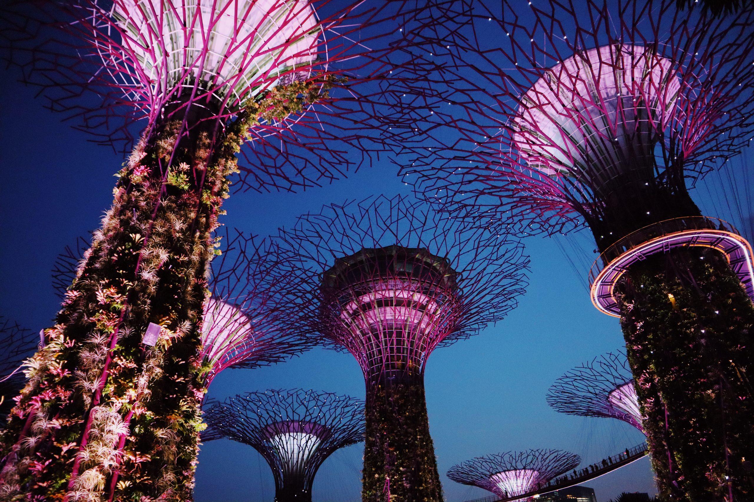 Corredores ecológicos urbanos que no conectan nada: Una visión crítica de Gardens by the Bay en Singapur