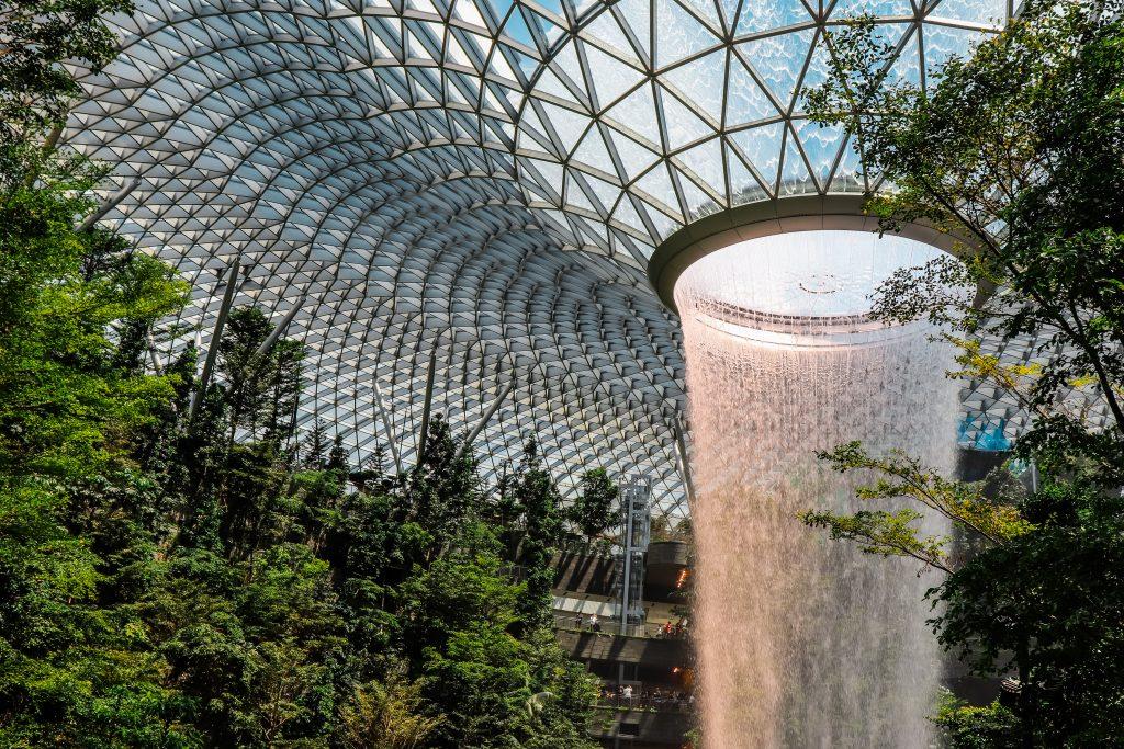 Restaurar la infraestructura verde ¿una cuestión de salud?