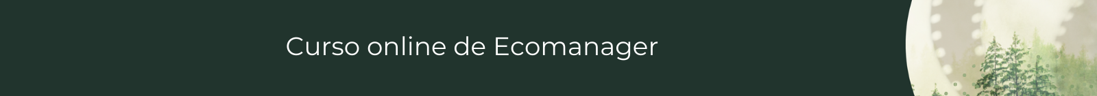Curso online de ecomanager