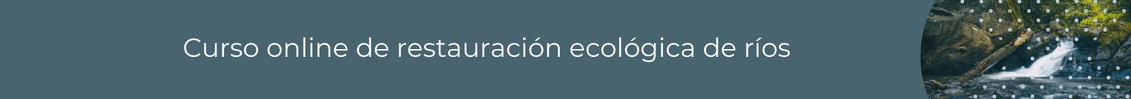 curso online restauración ecológica de ríos