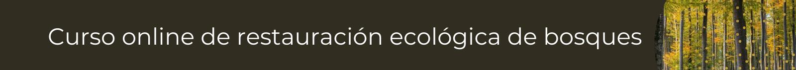 Curso de restauración ecológica de bosques