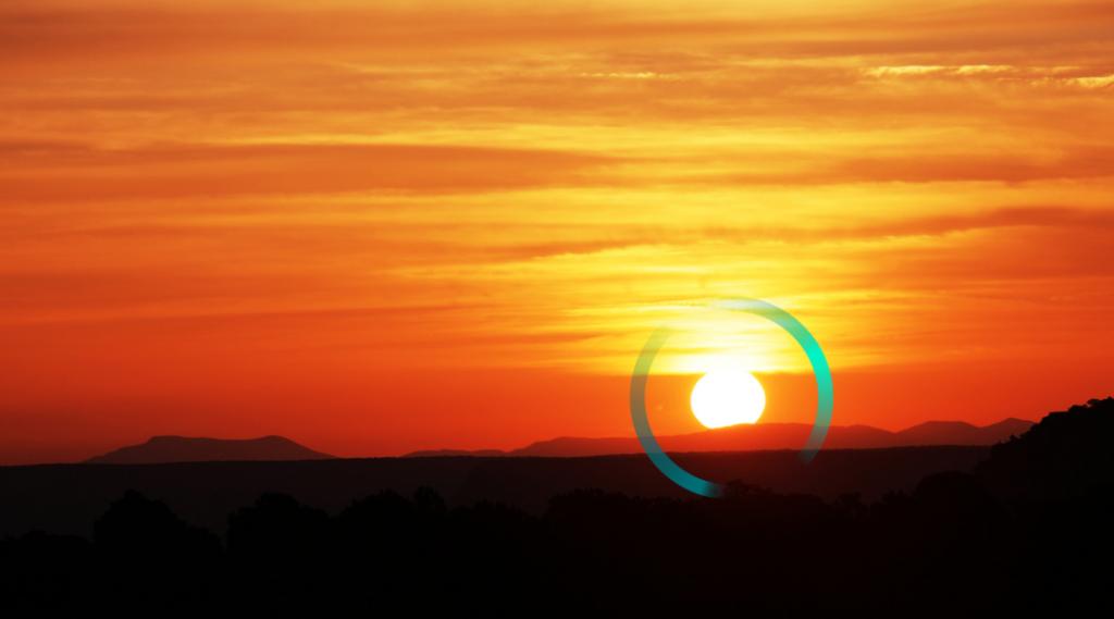 Cambio climático: ¿Una oportunidad para la Restauración Ecológica? Entrevista con Fernando Valladares